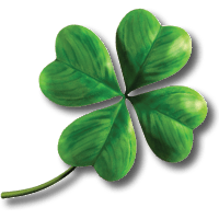 Clover Png Image PNG Image