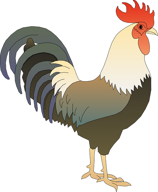 Free Vector Graphic: Rooster, Cock, Tap, Faucet, Hammer - Free Image On  Pixabay - 161546 - Cock HD PNG