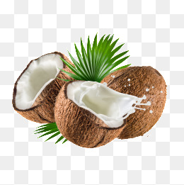 coconut - Coconut PNG