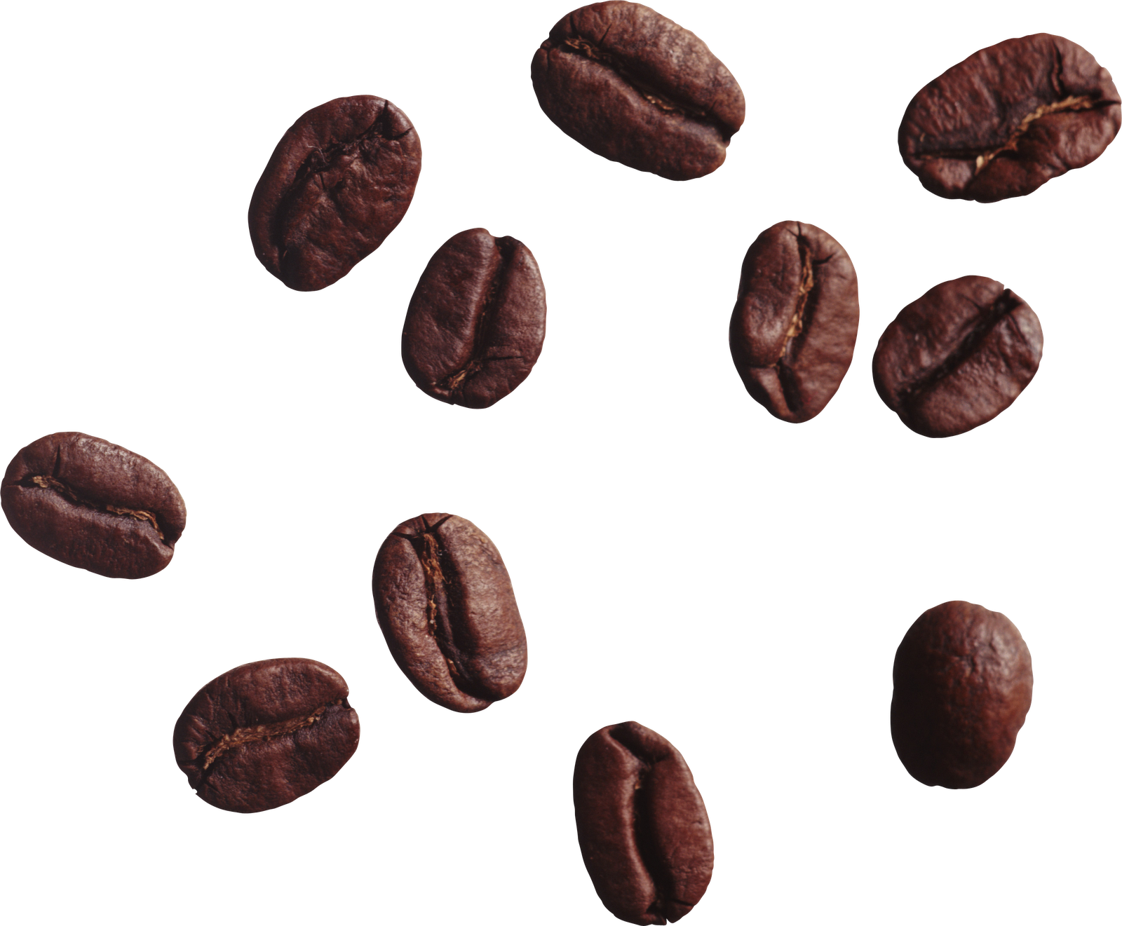 coffee beans PNG image Large size. Image Resolution: 512 x 512 - Coffee Beans PNG