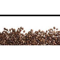 Coffee Beans Png Image PNG Image - Coffee Beans PNG