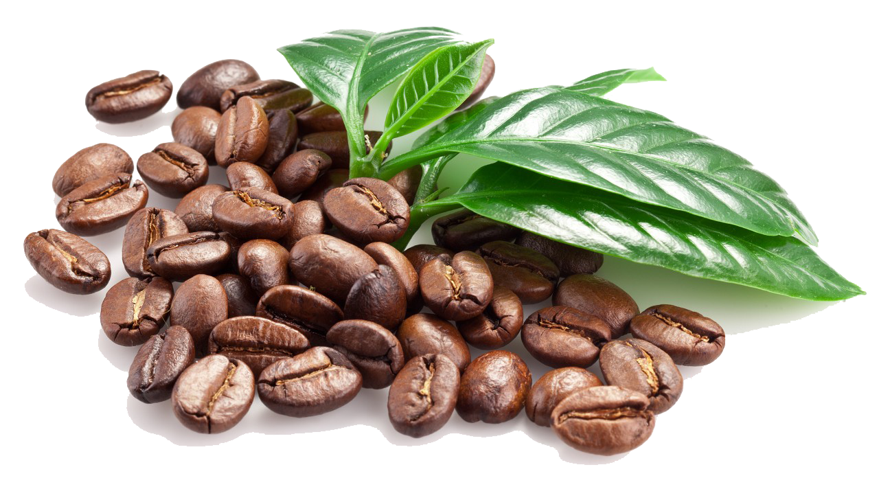 PNG File Name: Coffee Beans PlusPng.com  - Coffee Beans PNG