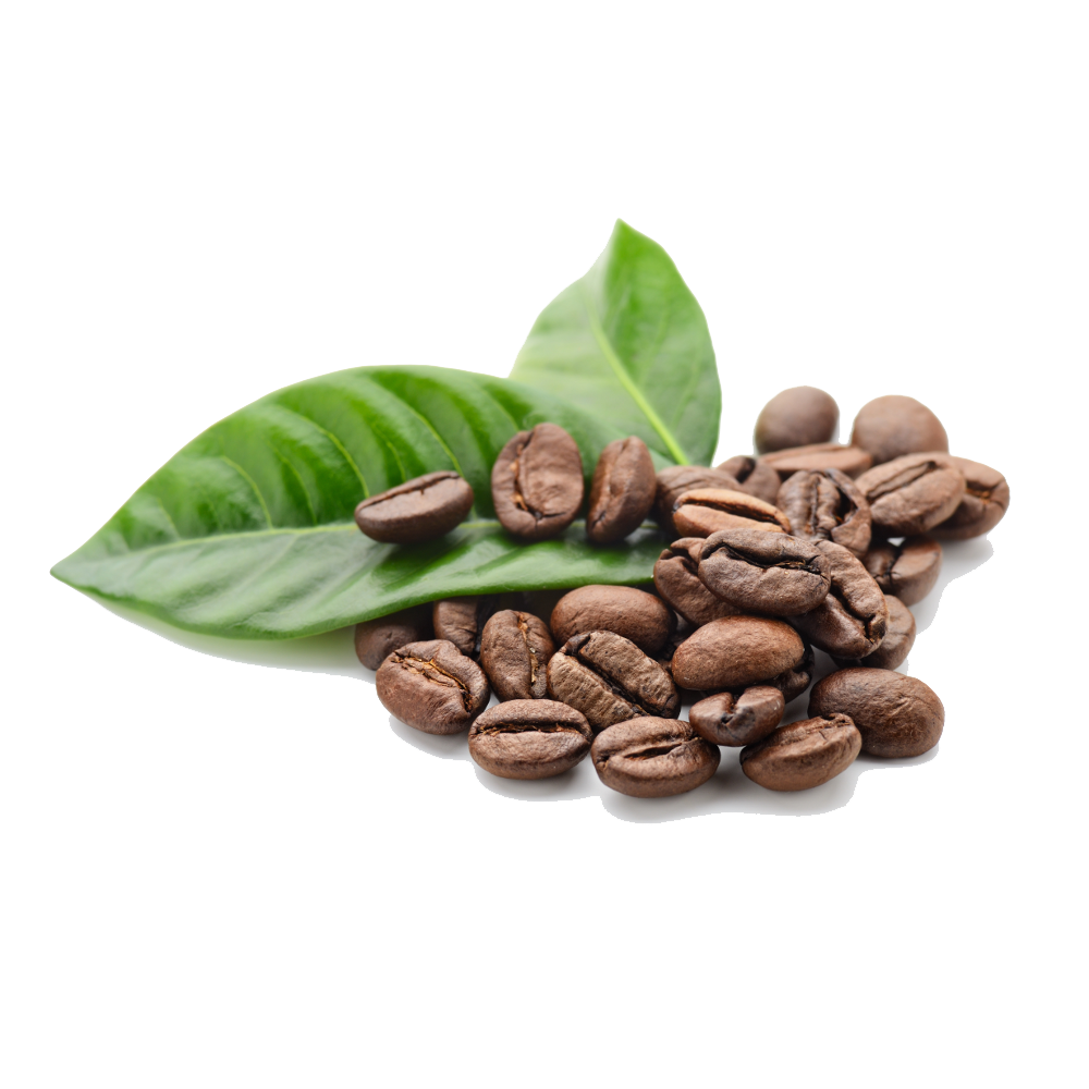 Coffee PNG - 21818