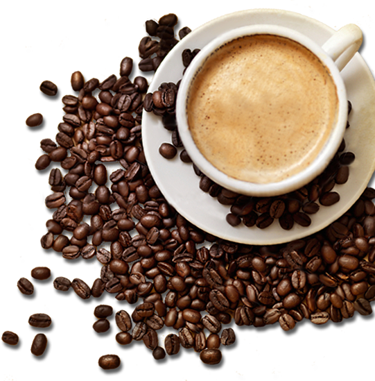 Coffee beans wtih coffee cup PNG HD, Coffee beans PNG twenty five - Coffeebeans HD PNG