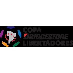 Copa Libertadores Logos - Copa America Logo Vector PNG