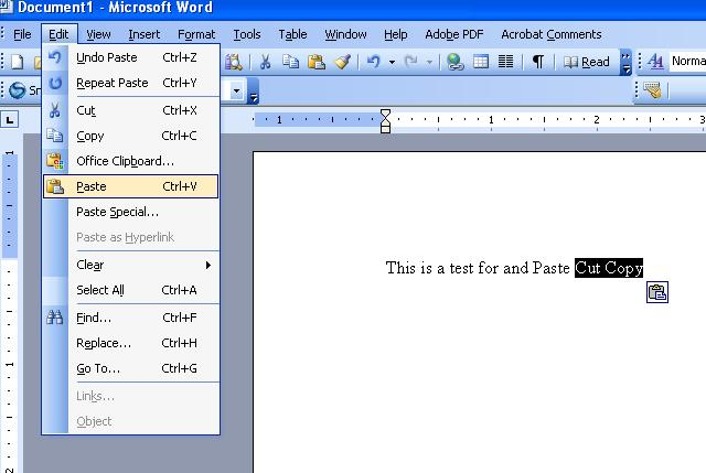 screen shot - Copy Of Word
