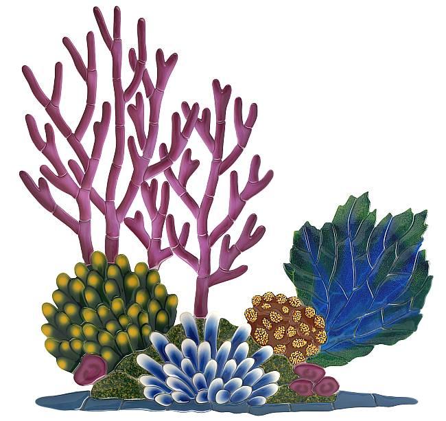 Clip art coral