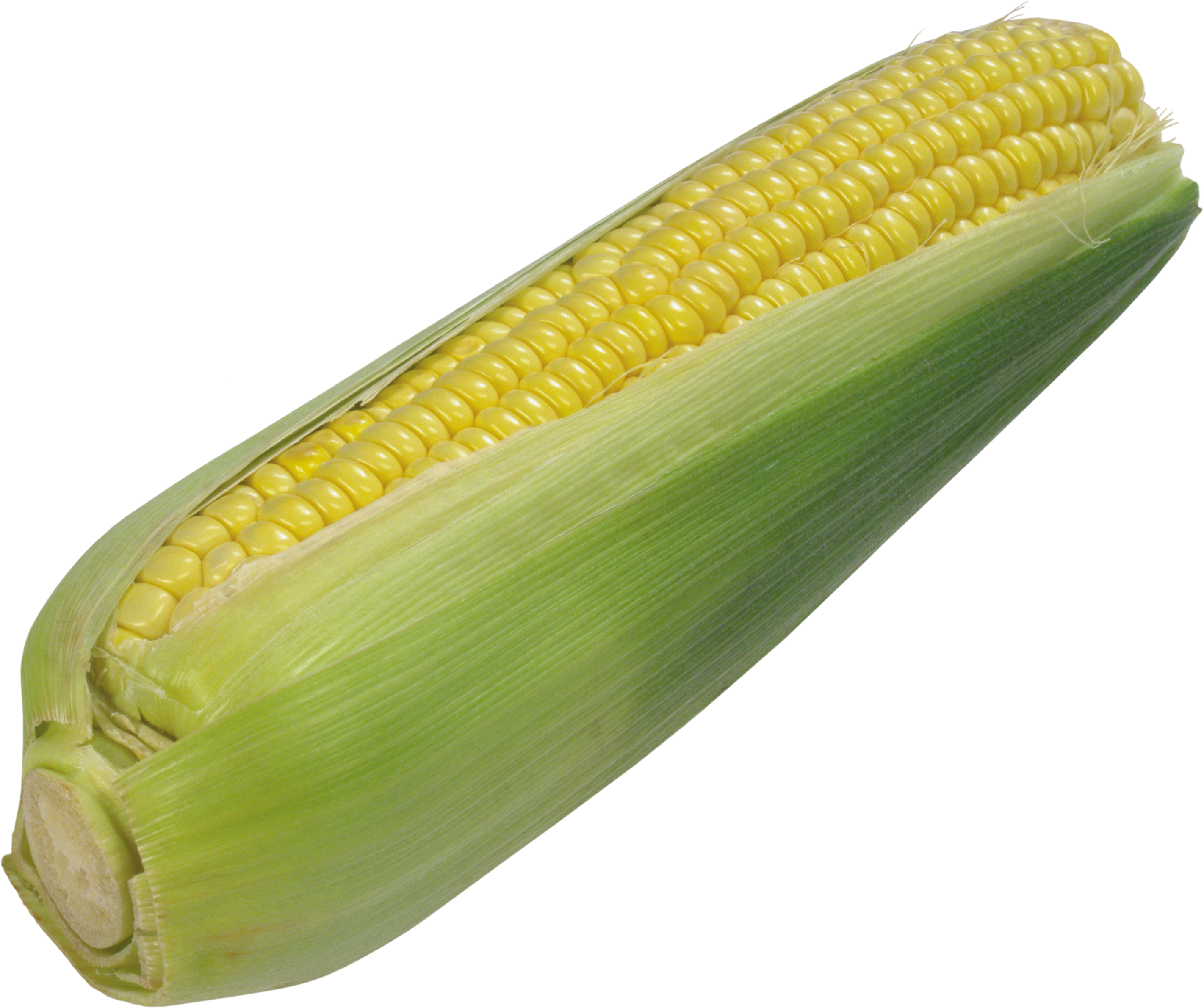 Corn PNG - 26327