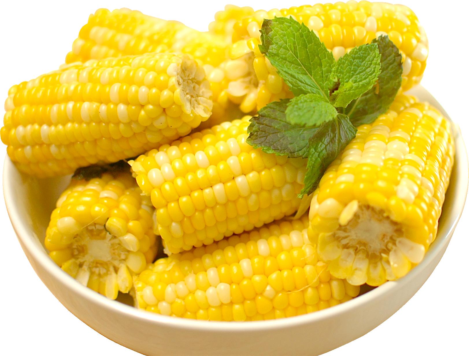 Corn PNG - 26324
