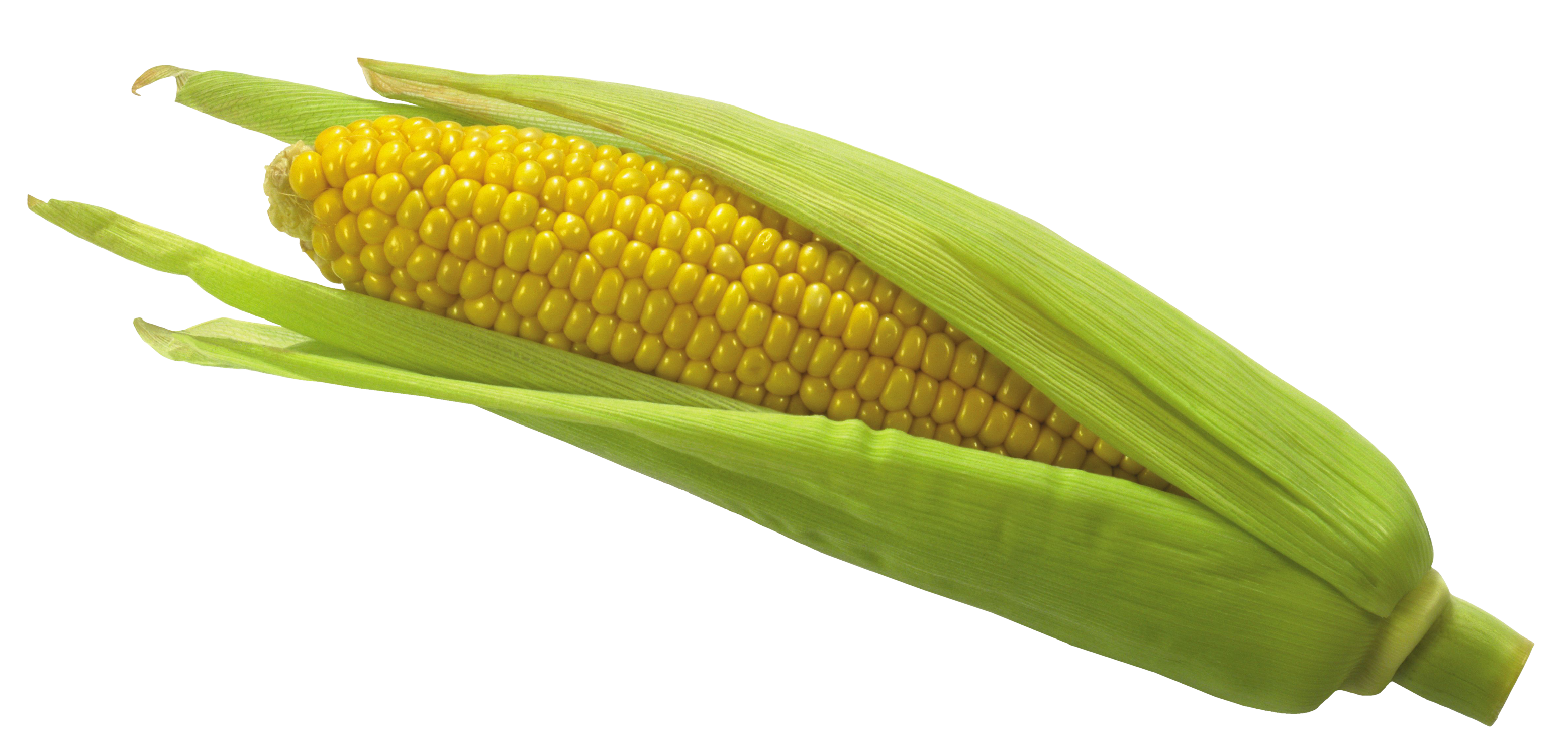 Sweet corn png