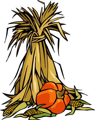 Corn Stalk Bundle PNG