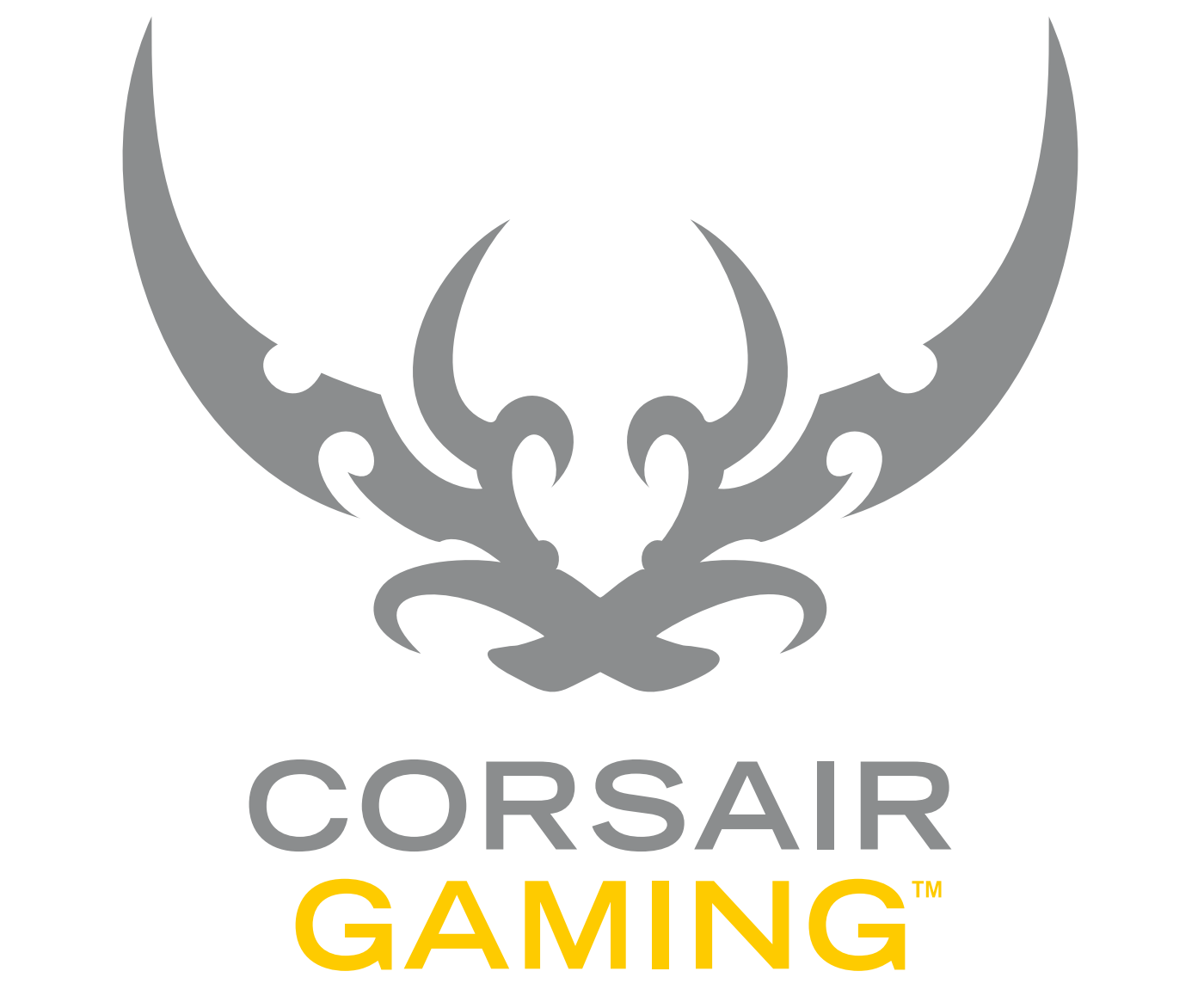 A petition to change the logo (Concerning the Corsair Gaming logo)  https://www.change pluspng.com/p/corsair-components-inc-keep-the-old-corsair-logo - Corsair Logo PNG