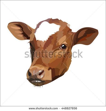 Cow head vector - Cow Head PNG HD