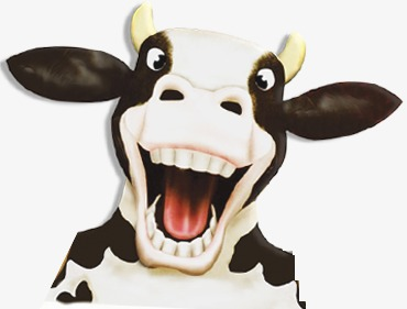 cows, Cartoon, Cows, Cows Vector PNG and PSD - Cow Head PNG HD