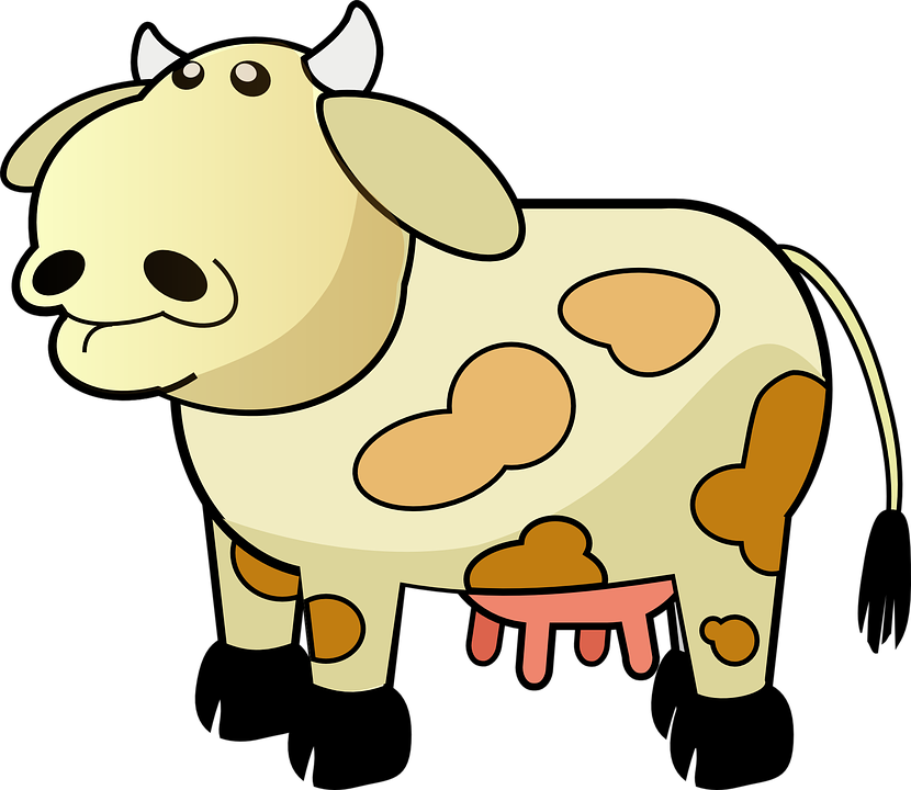 Cow, Dairy, Farm, Udders, Cattle, Milk, Rural - Cow Udders PNG