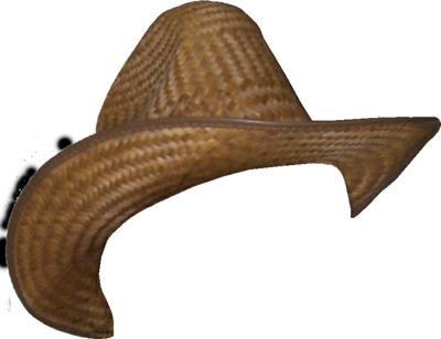 Cowboy Hat Png image #23098 - Cowboy Hat PNG