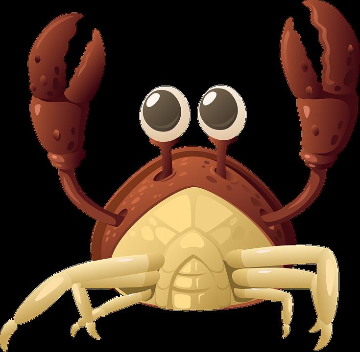 Lobster, Crab, Sea Life, Seafood, Food - Crab HD PNG
