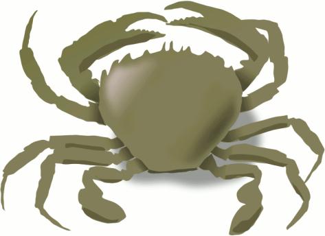 Crab PNG - 11903