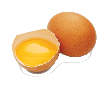 Cracked Egg PNG HD - 135661