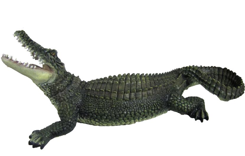 Crocodile HD PNG - 118146