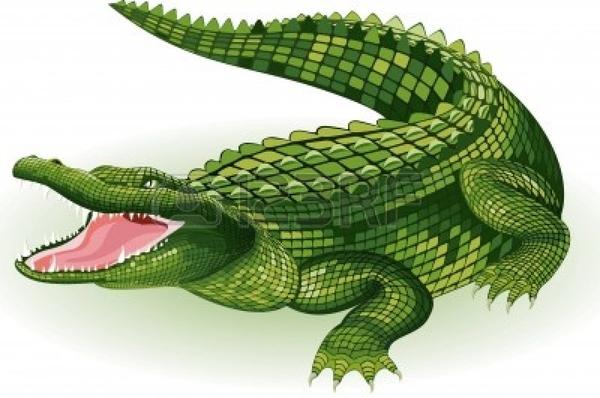 Crocodile PNG - 19887