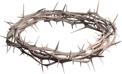 Crown Of Thorns PNG HD-PlusPNG.com-400 - Crown Of Thorns PNG HD