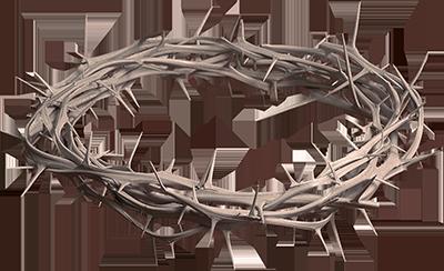 Crown Of Thorns PNG HD - 127244