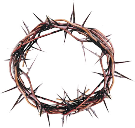 Crown Of Thorns PNG HD-PlusPNG.com-449 - Crown Of Thorns PNG HD