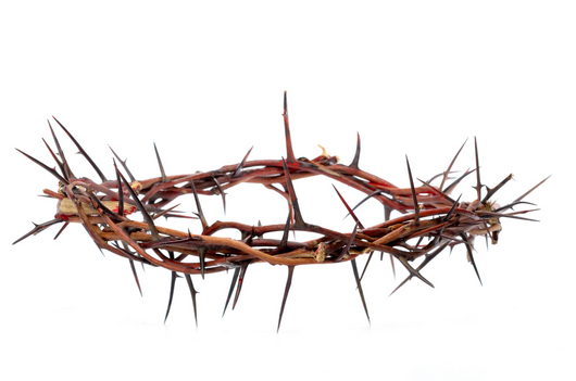 Crown Of Thorns PNG HD - 127237