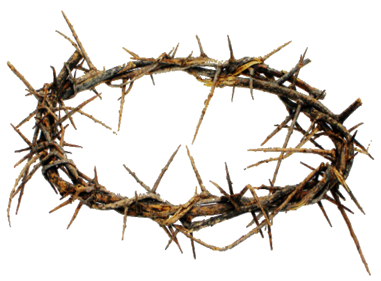 Crown Of Thorns PNG HD - 127238
