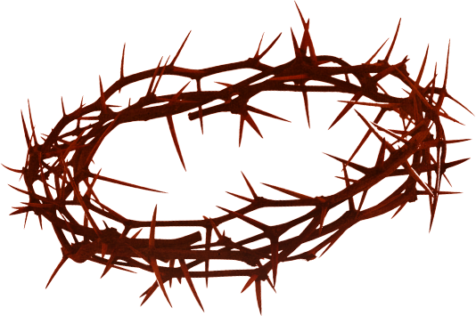 Crown Of Thorns PNG HD - 127248