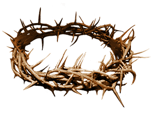 Revelation @The Crown of Thorns. u201c - Crown Of Thorns PNG HD