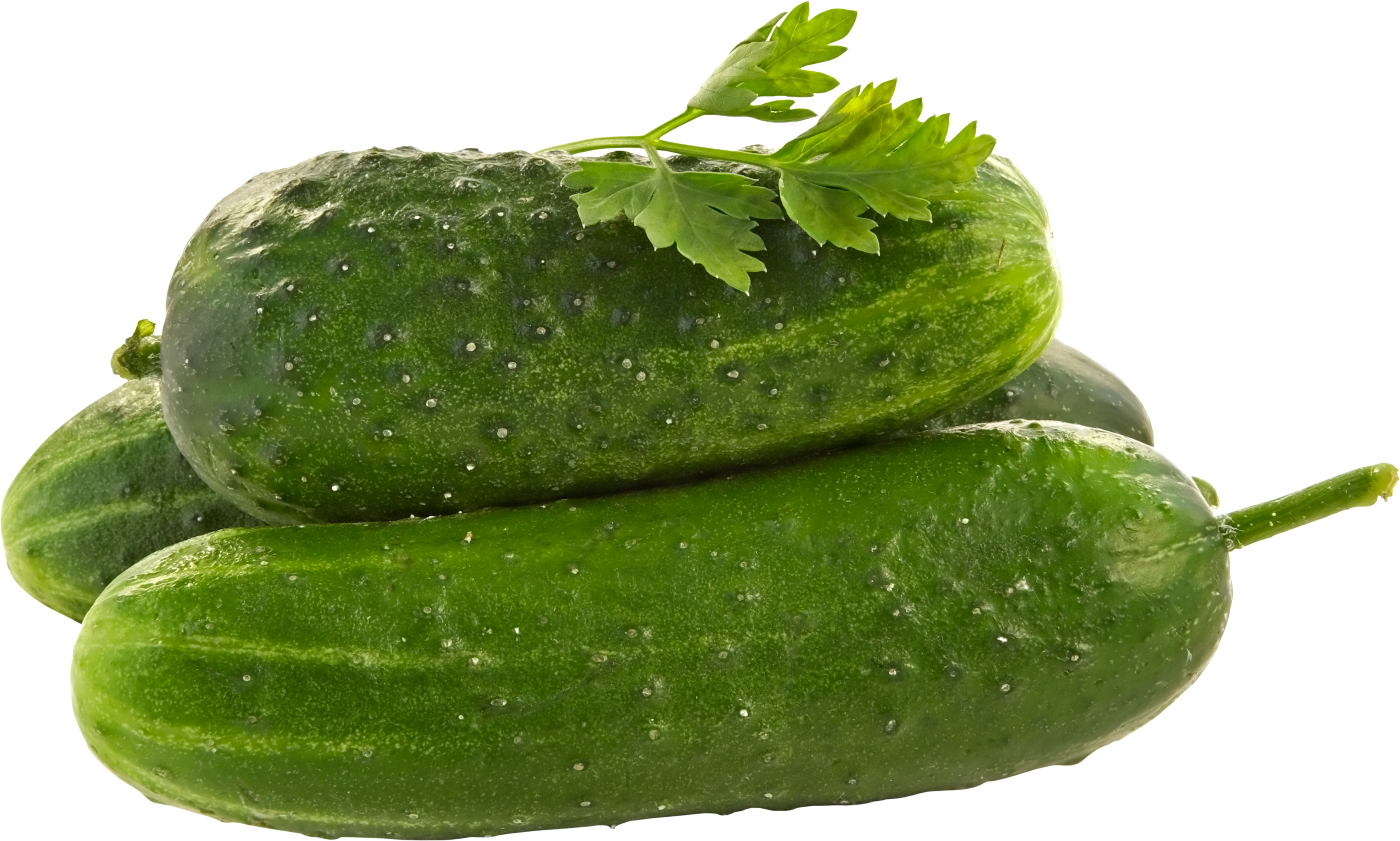 Free download of Cucumber PNG Image - Cucumber HD PNG
