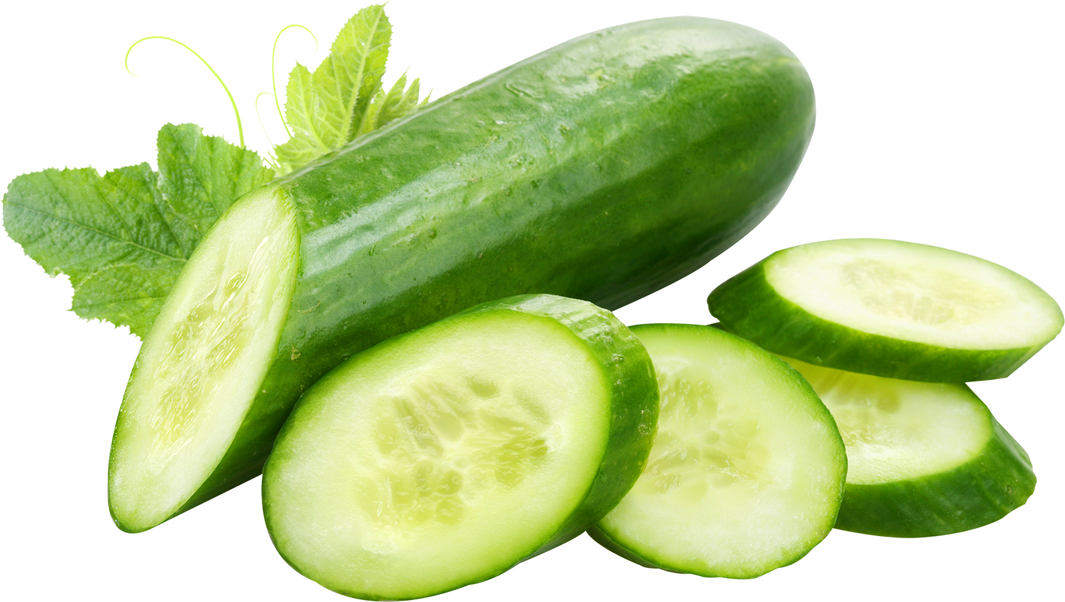 Home u003e Cucumber PNG Image. More View - Cucumber HD PNG