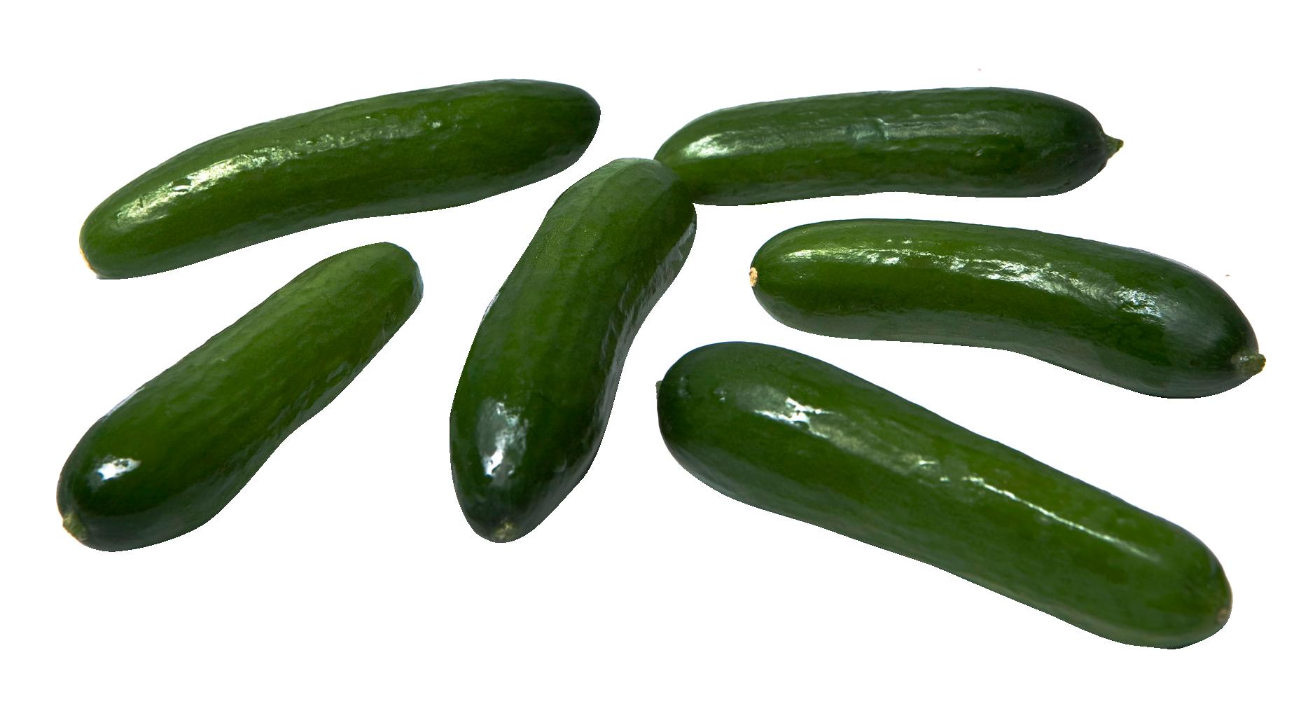 Cucumber PNG - 18784