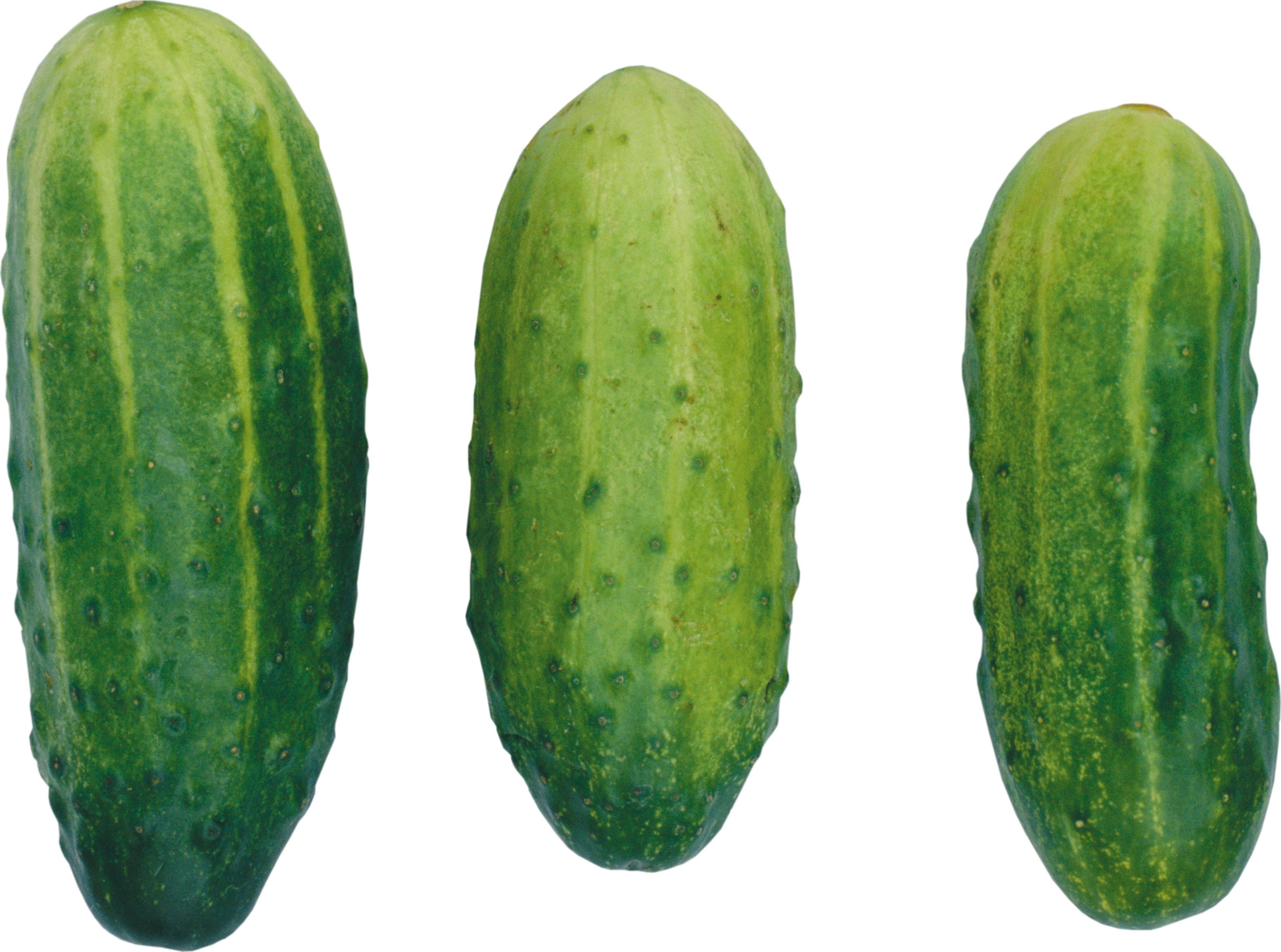 Cucumber PNG - 18785