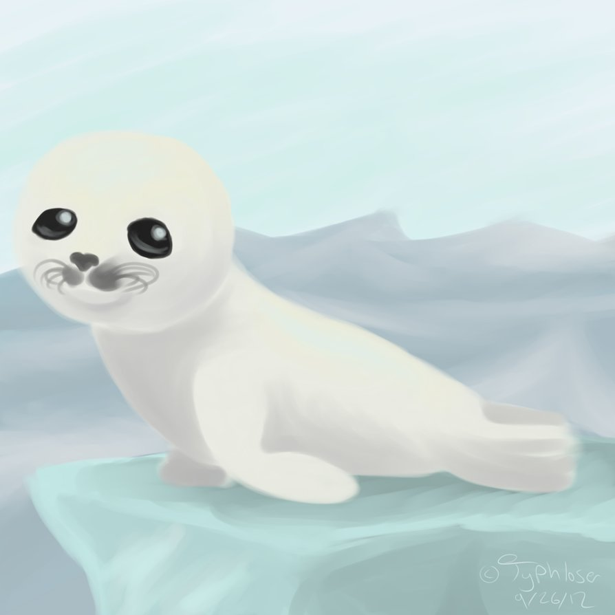 Baby Harp Seal by Typhloser PlusPng.com  - Cute Baby Seal PNG