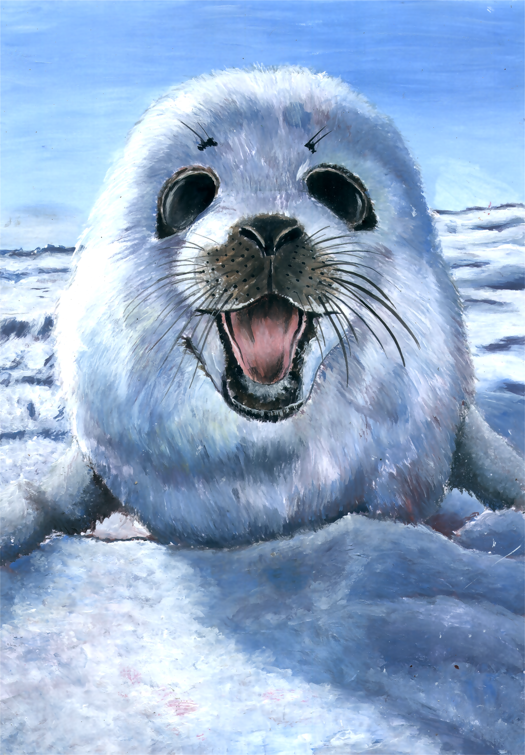 Harp seal pup by grim1978 Harp seal pup by grim1978 - Cute Baby Seal PNG