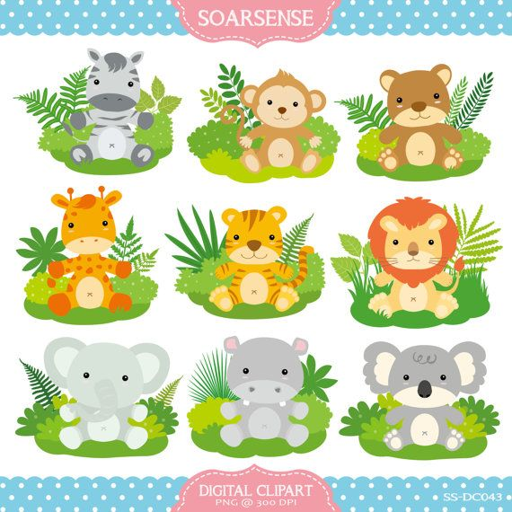 Cute Baby Zoo Animals PNG - 166537