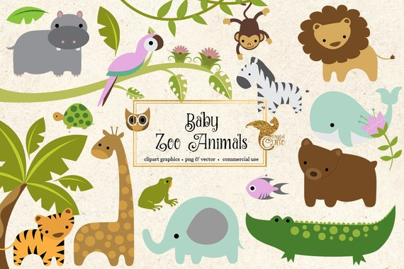 Cute Baby Zoo Animals PNG - 166545