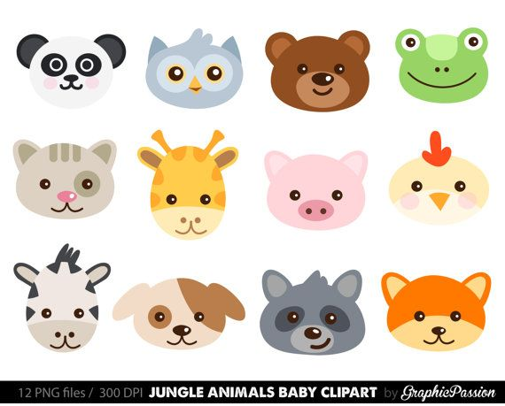 Cute Baby Zoo Animals PNG - 166544