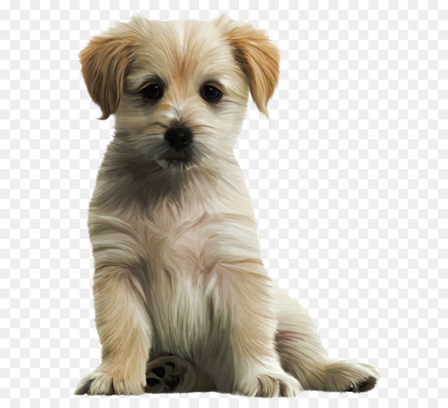 Collection of Cute Dog PNG HD.   PlusPNG (900 x 820 Pixel)