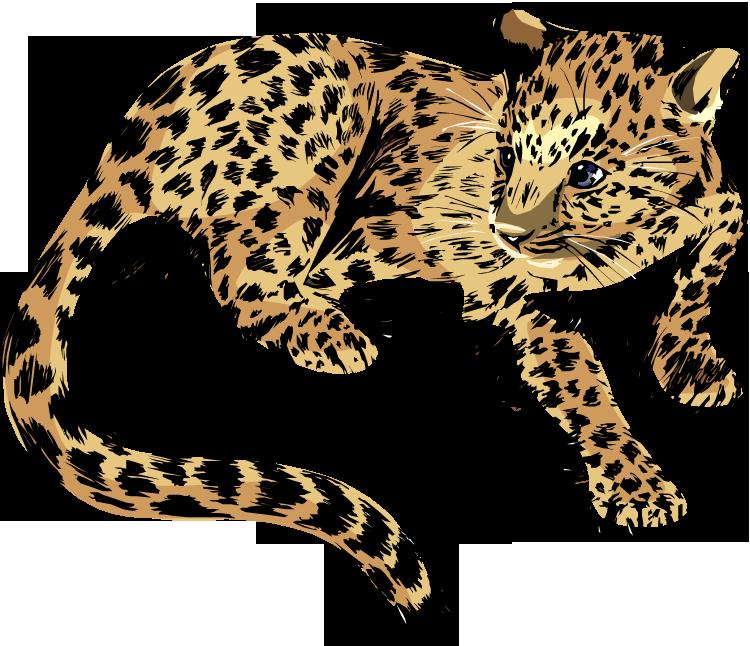 Free jaguar clipart 3 - Cute Jaguar PNG