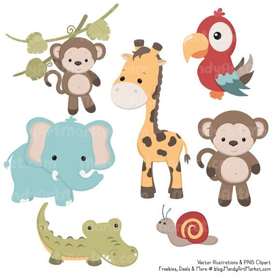 Cute Jungle Animals PNG HD - 121614