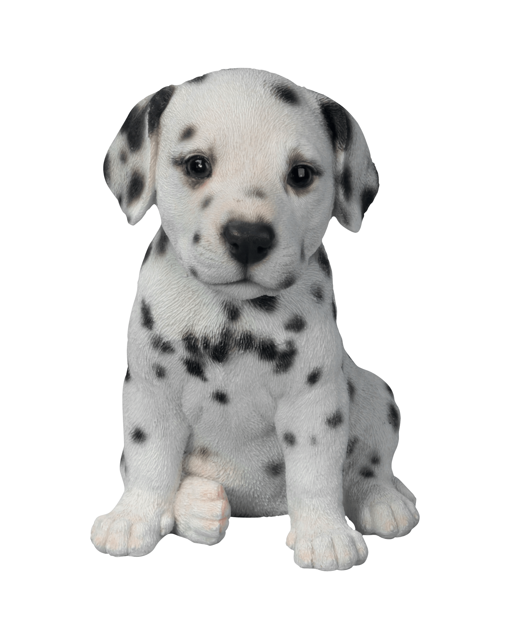 Dalmatian Puppy - Cute Puppies PNG Black And White
