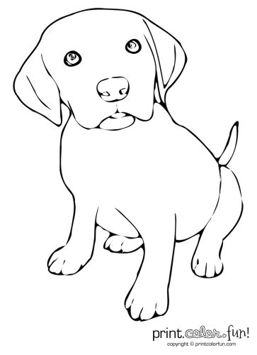 The PlusPng.com  - Cute Puppies PNG Black And White