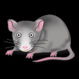Cute Rat PNG