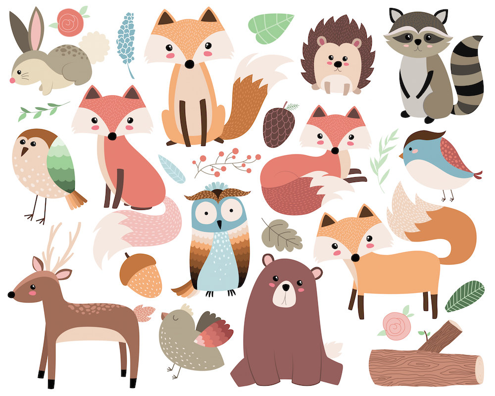 Cute Wild Animal PNG - 160604