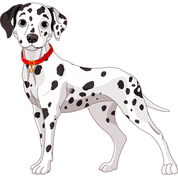 Spotted Dog - Dalmatian Dog PNG