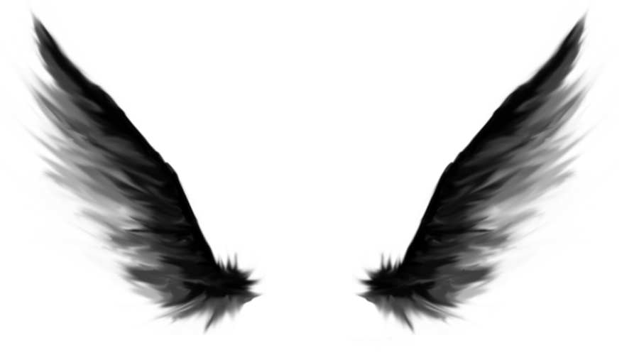 Dark Angel Wings by Dark Angel Wing - Dark Angel PNG